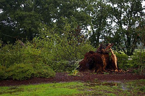 HurricaneGustav2008 004