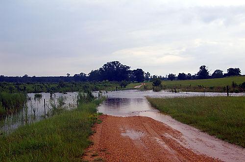 HurricaneGustav2008 011