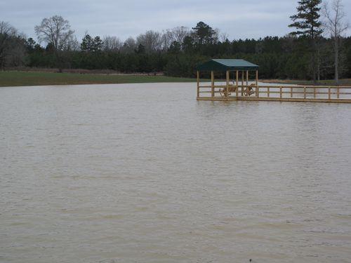 Full pond 2010 001