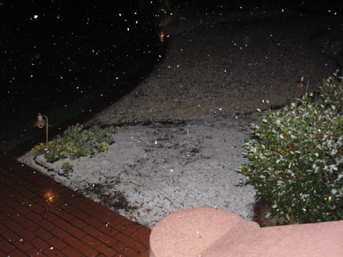 Sam;snow2010 002