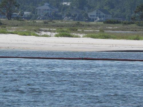 Beach 2010 008