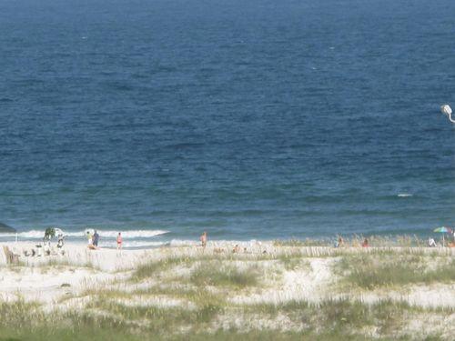 Beach2010 007