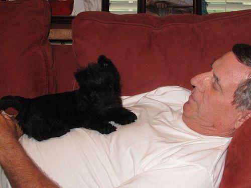 2011 Piper and Papa 001