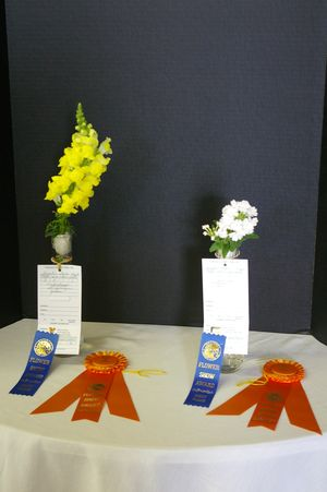 2012 Furniture Styles Flower Show 021