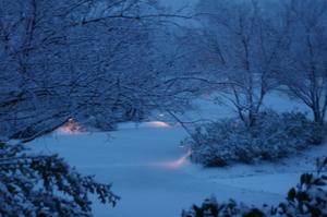 Snowday2008_015