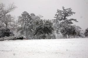 Snowday2008_032