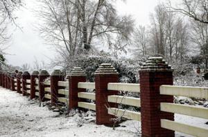 Snowday2008_065